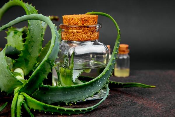 aloe-vera-y-aceite-oliva